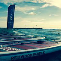 Paddle Redwood