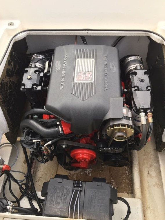 Bateau white shark 237 moteur volvo penta v6